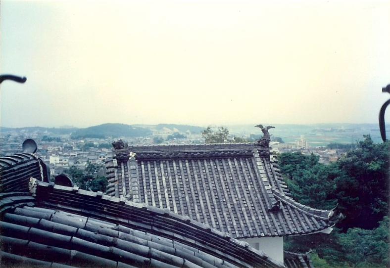 Iga Castle - Roof